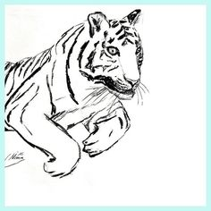 Never stop believing in yourself! Just move on even if only tiny steps at the given time. But just don't stop. Keep going and you'll get results and doors will open!  Follow for your daily dose of tiger power!  For Sale : Tiger Sketch Nr: S2016-042 Size: 42 x 59.7 cm   16.5 x 23.5 inch Material: carcoal drawing on paper Shipping: worldwide Price:  90- If you are interested in purchasing this sketch please send an e-mail to nimue@tigressart.com