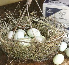 http://www.farmhousewares.com/wiregatheringbasketset.aspx#  Wire Gathering Baskets