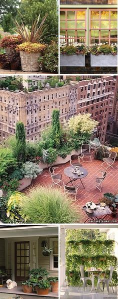 Reminds me of the rooftop garden I used to take care of on the plaza.