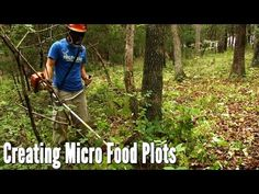 This video shows how to create a quick and easy food plot without expensive equipment that will be ready to hunt on in the fall seasons. Bow Hunting Deer, Whitetail Deer Hunting, Quail Hunting, Hunting Land, Pheasant Hunting, Turkey Hunting, Archery Hunting, Hunting Humor, Hunting Quotes
