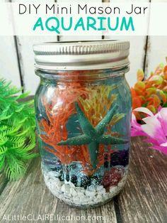 Aquarium using a Mason Jar