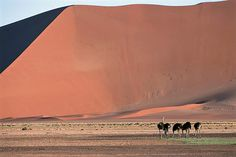 Photographic safaris at Little Kulala Sossusvlei in the Namib Desert in Namibia.