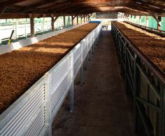 commercial vermicomposting | Posted on January 28, 2013 by sonomavalleywormfarm