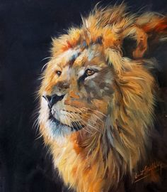 LION Superb New DAVID STRIBBLING Oil Painting #Realism