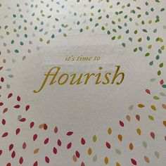 Flourish was a good word for 2017- I'm still seeing it everywhere! Now working on big things for 2018! #goalplanning #goalplanner #bigmagic #powersheets #flourish #yflourish2017