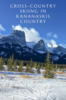 Visit Kananaskis Country in the winter! One of the best ways to experience the beauty of this area is Cross-Country Skiing. Check out some of the best trails in Kananaskis Country: Bragg Creek, Xc Ski, Banff Springs, Cross Country Skiing, Best Hikes, Amazing Adventures, Trail, Around The Worlds, Tours