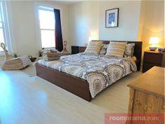 Short Term Rentals Clinton Hill - Apartment: Mini Studio Suite-10 min to center! - Roomorama
