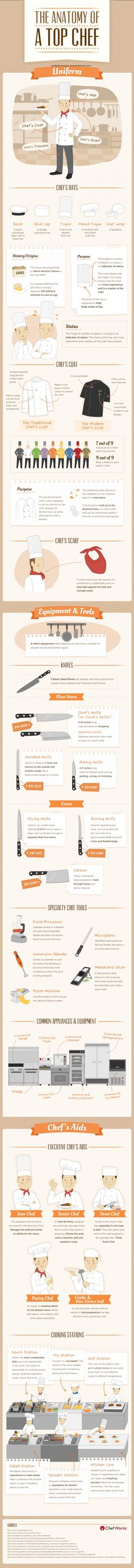 The Anatomy of a Top Chef Infographic. Think this is very interesting