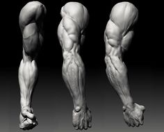 Image result for drawing arms and backs