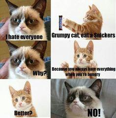 Grumpy Cat not yourself