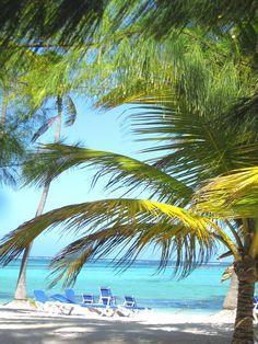 Punta Cana, Riu Bambu....my favourite resort so far!! #dominicanrepublic #puntacana #airbnb