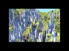 Depeche Mode - Higher Love meets BBC - Planet Earth (music video clip) - incredible nature montage video.
