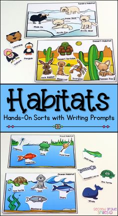 These habitat sorting mats are perfect for science centers! Students sort the provided animals into the correct habitats, record their names, and write about the characteristics that make them well suited for the habitat, but less well-suited for the othe 1st Grade Science, Teaching First Grade, Kindergarten Science, Elementary Science, Teaching Science, Science For Kids, Team Teaching, Summer Science, Science Fun