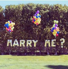 If you plan wedding proposals, balloons like these are a fun idea to use outdoors Romantic Proposal, Perfect Proposal, Surprise Proposal, Proposal Ideas, Beach Proposal, Surprise Engagement, Romantic Ideas, Wedding Proposals, Marriage Proposals