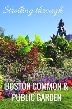 See the attractions inside America's oldest public and botanical park. Strolling through Boston Common and the Public Garden.