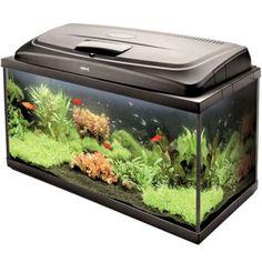 Large-Fish-Tank-98-Litres-Complete-Aquarium-Set-up-with-Heater-Filter-amp-Light