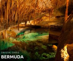 This uniquely beautiful cave with its azure water and fascinating formations isn't to be missed if you happen to be in Bermuda! Guided tours are provided for the whole family to enjoy!