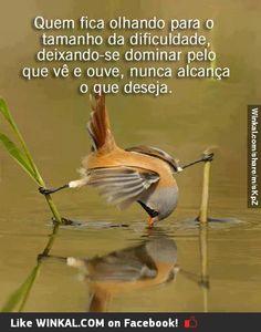 No permita que a dificuldade impeça que alcance o que deseja..