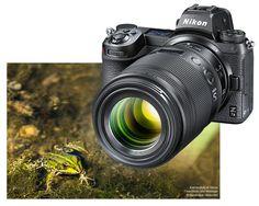 Nikon, Binoculars, Food Photography, Pictures, Macro Photography, Macros, Camera, Nature, Animales
