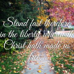 Freedom and Liberty in Christ