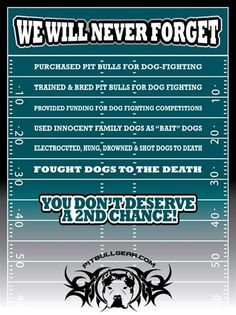 Anti-Vick Shirt Wearer Denied Entrance to Eagles Game - For the Love of the Dog Mike Vick, Bred Pit, Eagles Game, Michael Vick, Dog Lady, Stop Animal Cruelty, Happy Tears, Dog Fighting, Pit Bull Love