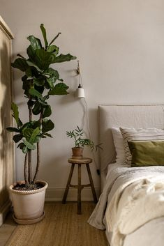 natural bedroom decor with plants Bedroom Plants Decor, House Plants Decor, Plant Decor, Teenage Room Decor, My New Room, My Room, Natural Bedroom, Interior Minimalista, Bedroom Inspo