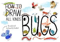 1 how to draw bugs