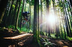 Altered states in the forest.pic from Horsthimself on tumblr. Check our sick Black Friday leaks at http://montereymountainbike.com/black-friday-leaks/ #monterey_mountain_bike #bike #mountainbike #downhill #ridaz #bikes #mybike #trail #rural #mtb #allmountain #fun #outdoors #instapic #bestoftheday #instagood #tagsta #love #tagsta_sport #biking #instahub #moutain #instalove #igaddict #instagramfitness