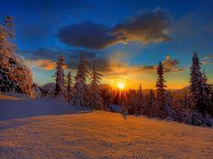 Sunset at the winter forest   Google Image Result for http://1.bp.blogspot.com/-fE8ZgcuBgjQ/UhDm9BvEW4I/AAAAAAAAACc/LU6gzcfz5Zc/s1600/Free-snow-sunrise-wallpaper-download...