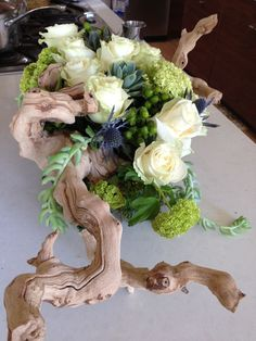 grapewood branch succulent centerpiece - Google Search