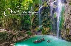 5 Reasons why you should visit OSLOB in CEBU, PHILIPPINES! ~ Traveler's Couch by Moon Ray Lo