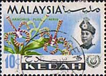 Malay State of Kedah 1965 Orchids Fine Used SG 119 Scott 110 Other Asian and British Commonwealth Stamps HERE!