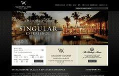Waldorf Astoria http://www.waldorfastoria.com/