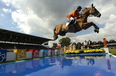 Jeroen Dubbeldam & BMC Up & Down in the Jumping competition at the 2006 WEG ©FEI/Kit Houghton