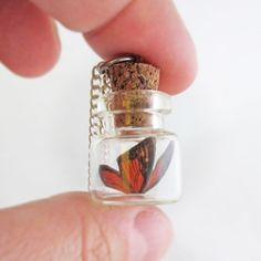 Butterfly In A Bottle Necklace - Monarch at shanalogic.com