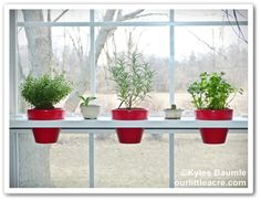 Our Little Acre: Lowe's Creative Ideas Project: Swing Shelf for Herbs