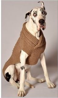 Dog Boutique, Designer Dog Clothing and Accessories for your Dog: We Have Great Gifts For Big Dogs.
