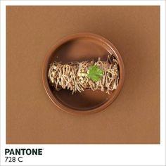 #akatoa #pantone #food brown  www.akatoa.com