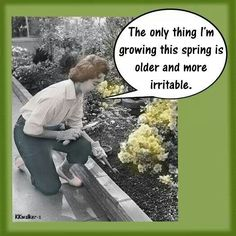 The only thing I'm growing this spring is older and more irritable