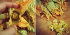 Step-by-step instructions for preparing zucchini flowers (fiori di zucca). The stamens inside the flower must be removed.