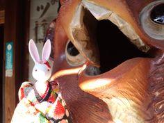 【西尾八つ橋さんの大狸】   江戸時代・元禄年間創業の老舗「西尾」さんの歴史は、聖護院の森の「八ッ橋屋梅林茶店」にさかのぼります。当時、商っていたのは、米粉を使って作られた素朴な「白餅」でした。その後に出来た煎餅の「八つ橋」は東海道を行く旅人の携帯食としても重宝されたそうです。本店入り口には信楽焼の大きな狸が立っています。
