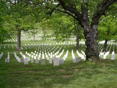 Arlington National Cemetery - Fort Myer, VA