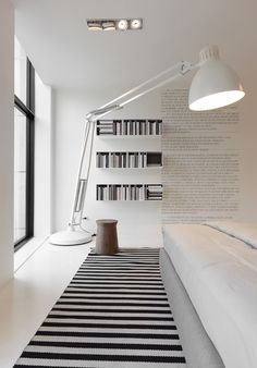 Great color of white with a hint of black line rugs with book case and glass window incorporates