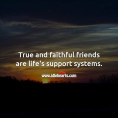 True and faithful friends are life's support systems. My Sisters Keeper Quotes, Sister Keeper, Life Support System, Verses, Friendship, Bible, Wisdom, Faith, Inspiration