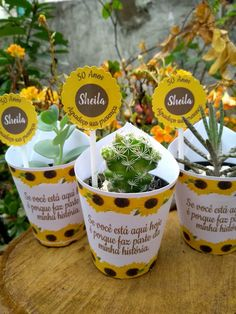 Sweet Fifteen, 40th Anniversary, Baby Shower, Planter Pots, Party, Wedding, Sunflower Wedding Favors, Sunflower Weddings, Sunflower Birthday Parties