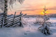 ***Winter twilight (Finland) by Asko Kuittinen ❄️c.