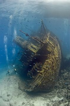 The shipwreck of Gianni's D at Sha'ab Abu Nuhas (Arabic: شعب أبو النحاس Shaʿb Abū an-Nuḥās) is a coral reef northwest of Shadwan Island in the northern Red Sea, photo by Ivo Vaessen.