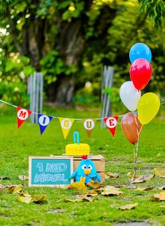 Smash the Cake - 1 ano Miguel Picnic Birthday, Baby Boy 1st Birthday, 1st Birthday Parties, Birthday Party Decorations, Party Themes, Birthday Backdrop, Outdoor Cake Smash, Mango Avocado Salsa, Foto Baby