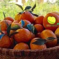Un cesto di bontà. Limoni, arance e mandarini biologici 100% certificati.