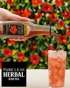 NEW Pure Leaf Brewed Herbal Iced Tea! Our herbal tea is crafted from brewed hibiscus flowers, combined with natural mango flavour. Tea Cocktails, Party Drinks, Fun Drinks, Healthy Drinks, Beverages, Good Food, Yummy Food, Tasty, Pork Tenderloin Recipes